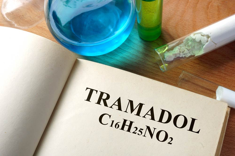 What-is-the-Half-Life-of-Tramadol